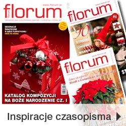 Czasopisma florystyczne FLORUM na Boże Nardzenie