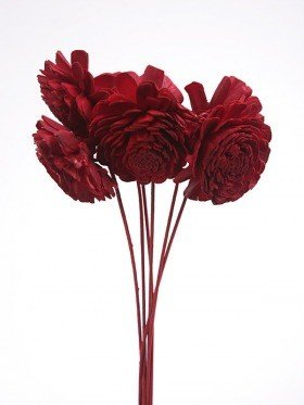 Kwiatki Belly 8 cm 6  szt./op. - czerwone na piku
